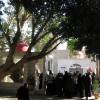 <!--:ro-->Palestina: Ierihon &#8211; Dudul lui Zaheu, Izvorul lui Elisei <!--:-->