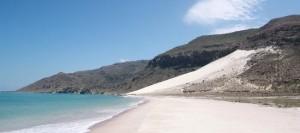 socotra-island delisha