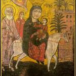 Pelerinaj in Egipt – Pe urmele Sfintei Familii – FUGA IN EGIPT